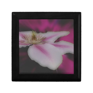 White And Pink Clematis Flower Trinket Box