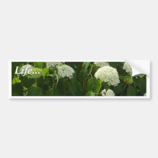 White And Pink Flowers Car Bumper Sticker