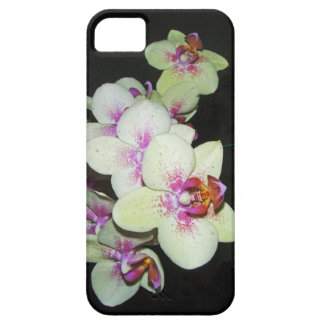 white and pink orchid case for the iPhone 5