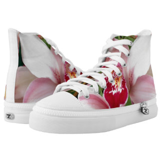 White and Pink Phalaenopsis Orchid High Tops