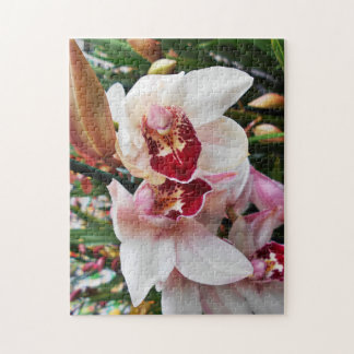 White and Pink Phalaenopsis Orchid Jigsaw Puzzle