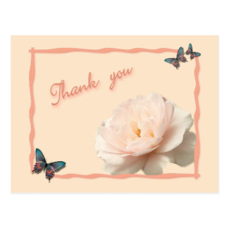 White and pink rose postcard