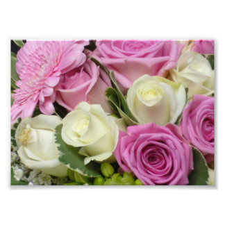 White and Pink Roses Photo Print