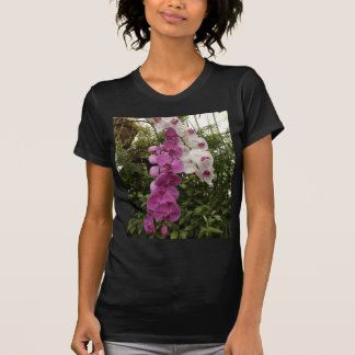 White and purple orchids tee shirt