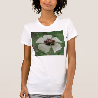 White and Purple Passionflower Ladies T Shirt