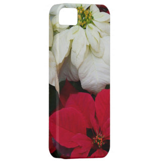 White and Red Poinsettias II Christmas Holiday Case For The iPhone 5
