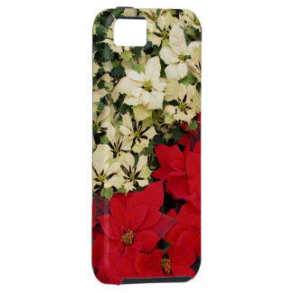 White and Red Poinsettias Tough iPhone 5 Case