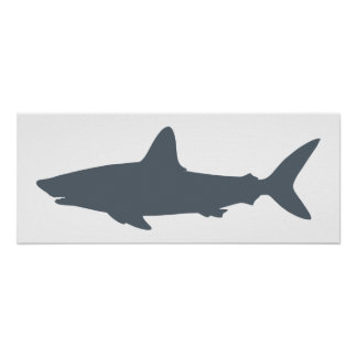 White and Stormy Weather Shark Poster