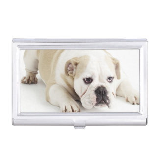 White and tan bulldog business card holder