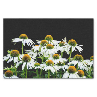 White and Yellow Daisies on Black Tissue Paper