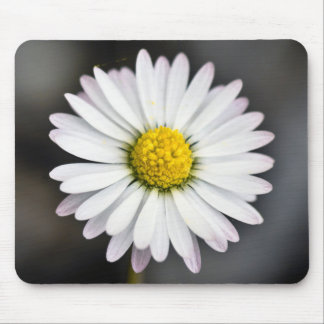 White and Yellow Daisy Mouse Pad