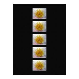 White and Yellow Flower Custom Invitations