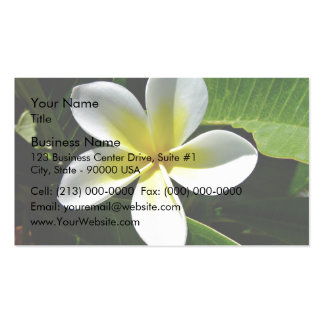 White and Yellow Frangipani blossom Business Card Templates