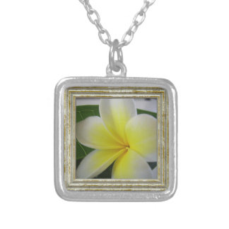 White And Yellow Frangipani Flower Silver Plated Necklace