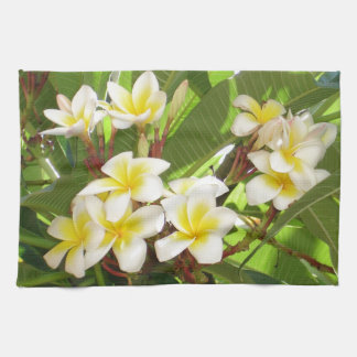 White and Yellow Frangipani Flowers with Leaves in Hand Towel