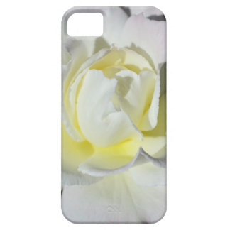 White and Yellow Rose iPhone 5 Cover