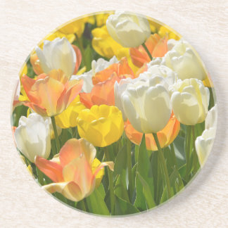 White and yellow tulips coasters