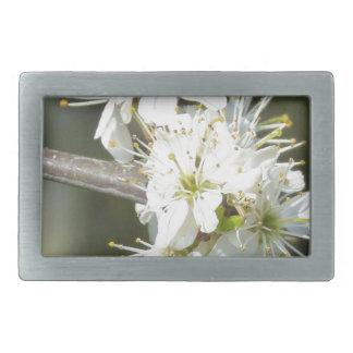 White Apple Blossom Flowers Belt Buckles