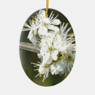 White Apple Blossom Flowers Ceramic Oval Decoration