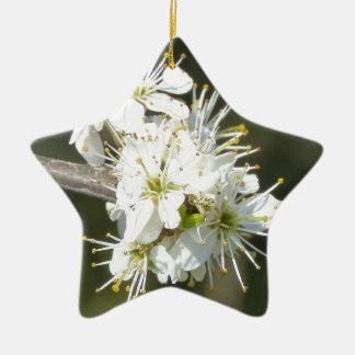 White Apple Blossom Flowers Ceramic Star Decoration
