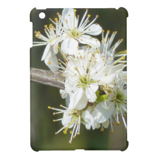 White Apple Blossom Flowers iPad Mini Cases