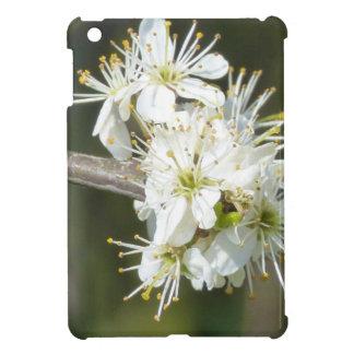 White Apple Blossom Flowers iPad Mini Cover