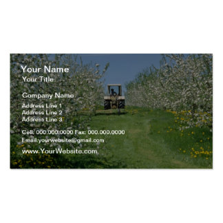 white Apple orchard cultivating, Nova Scotia flowe Pack Of Standard Business Cards