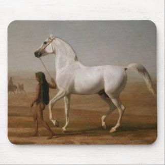 White Arab stallion Mouse Mat