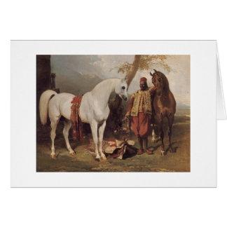 White Arabian Card