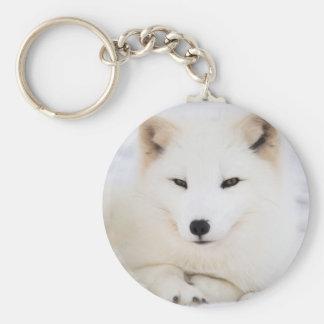 White arctic fox in snow basic round button key ring