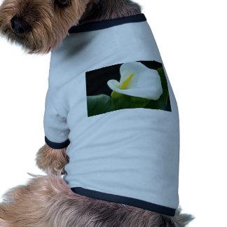 white Arum lily flowers Dog T Shirt