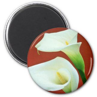 white Arum lily flowers Fridge Magnets