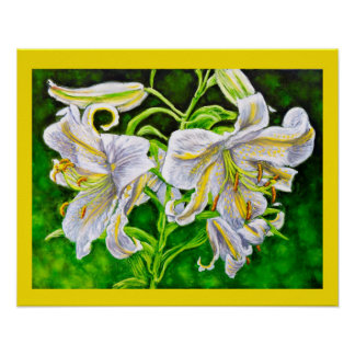 White Asiatic Lily Poster