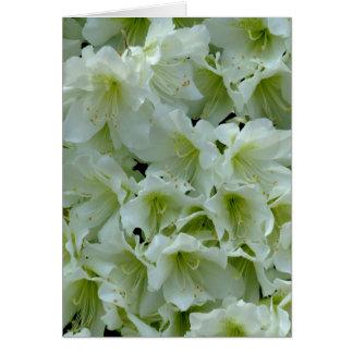 White Azalea Patch Flower Greeting Card