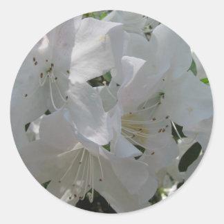 White Azalea Round Sticker