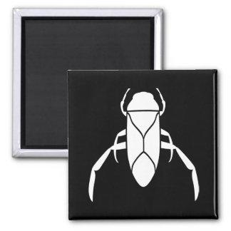 White Back Swimmer Insect Print Fridge Magnet