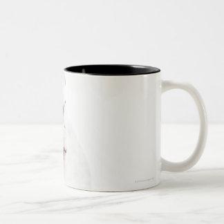 white background, white bulldog, blue tinted Two-Tone coffee mug