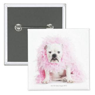 white background, white bulldog, pink feather 15 cm square badge