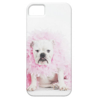white background, white bulldog, pink feather iPhone 5 cover