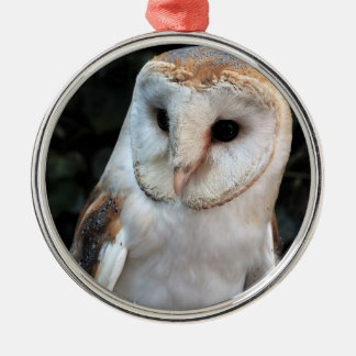 White Barn Owl Christmas Ornament