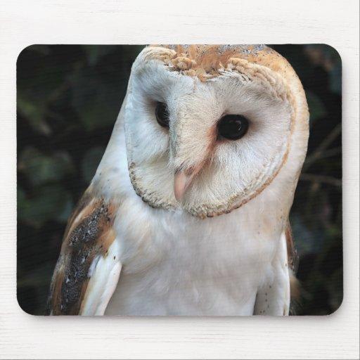 White Barn Owl Mousepads