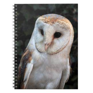White Barn Owl Notebook