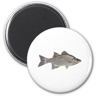 White Bass Logo 6 Cm Round Magnet