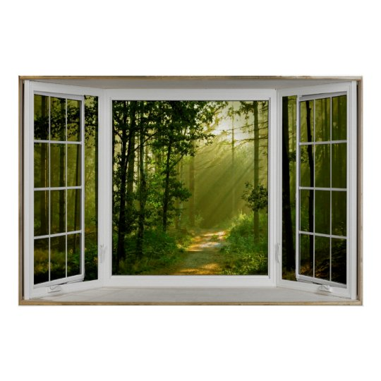 White Bay Window Illusion Forest Path Poster