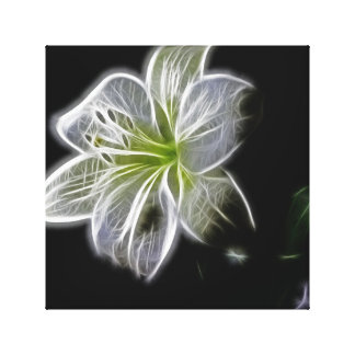 White Beauty Canvas Art