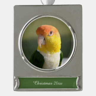 White Bellied Caique Parrot Silver Plated Banner Ornament