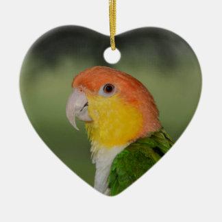 White Bellied Caique Parrot Ornament
