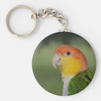 White Bellied Caique Parrot Outdoors Basic Round Button Key Ring