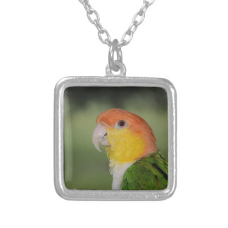 White Bellied Caique Parrot Outdoors Silver Plated Necklace