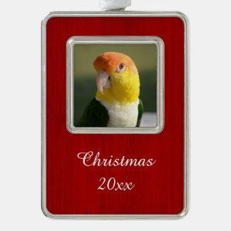 White Bellied Caique Parrot Silver Plated Framed Ornament